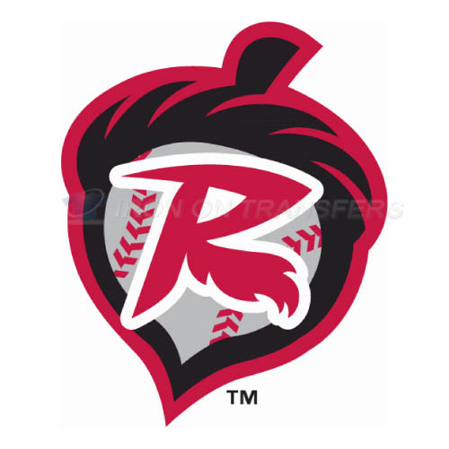 Richmond Flying Squirrels Iron-on Stickers (Heat Transfers)NO.7869