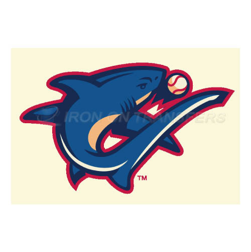 Clearwater Threshers Iron-on Stickers (Heat Transfers)NO.7892