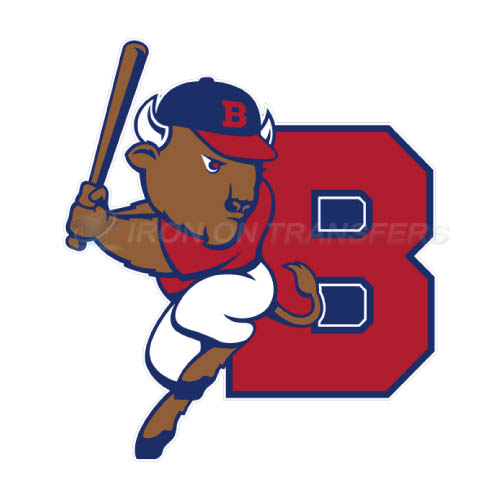 Buffalo Bisons Iron-on Stickers (Heat Transfers)NO.7933