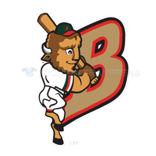 Buffalo Bisons Iron-on Stickers (Heat Transfers)NO.7936