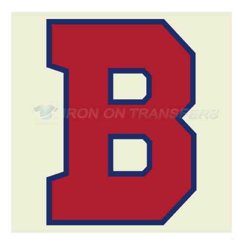 Buffalo Bisons Iron-on Stickers (Heat Transfers)NO.7943