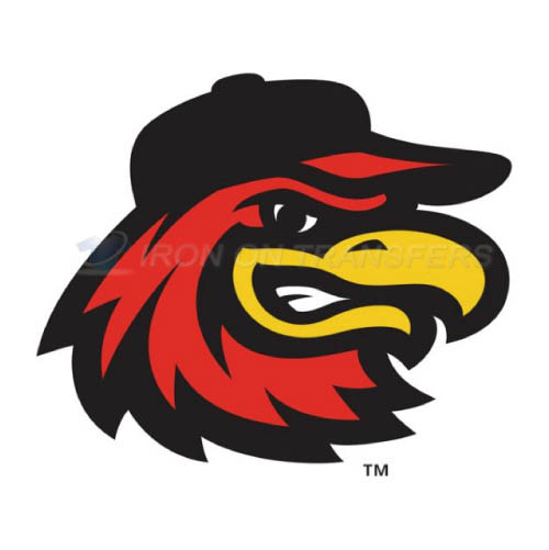 Rochester Red Wings Iron-on Stickers (Heat Transfers)NO.8009