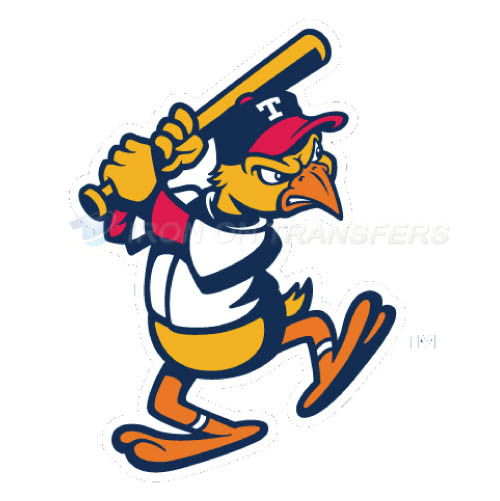 Toledo Mud Hens Iron-on Stickers (Heat Transfers)NO.8030