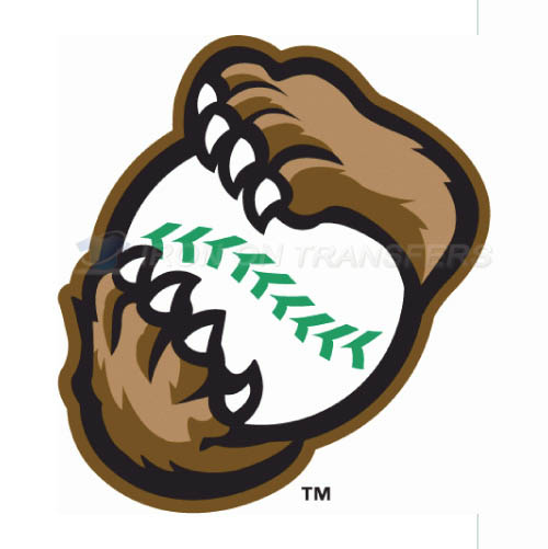 Kane County Cougars Iron-on Stickers (Heat Transfers)NO.8108
