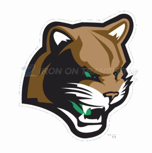 Kane County Cougars Iron-on Stickers (Heat Transfers)NO.8109