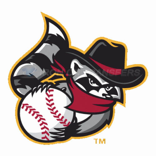 Quad Cities River Bandits Iron-on Stickers (Heat Transfers)NO.8121