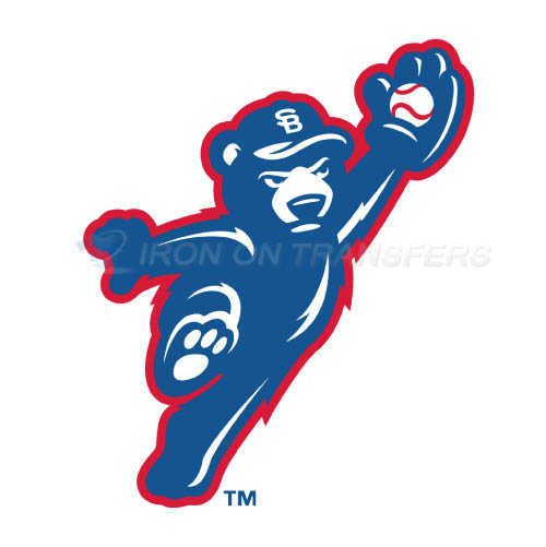 South Bend Cubs Iron-on Stickers (Heat Transfers)NO.8131