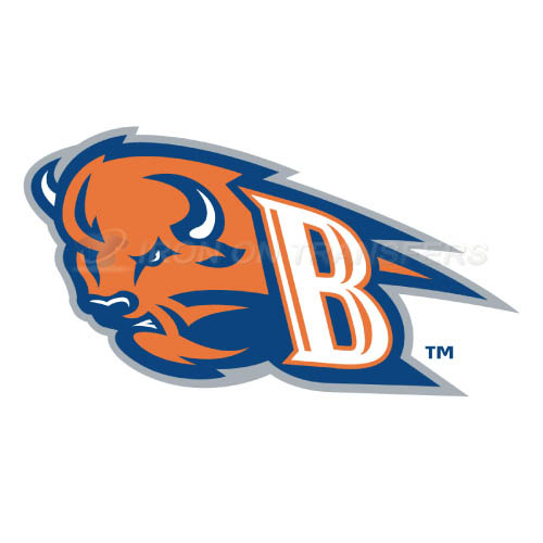 Bucknell Bison Iron-on Stickers (Heat Transfers)NO.4035