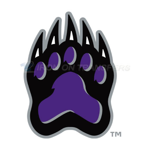 Central Arkansas Bears Iron-on Stickers (Heat Transfers)NO.4106
