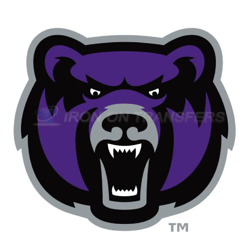 Central Arkansas Bears Iron-on Stickers (Heat Transfers)NO.4108