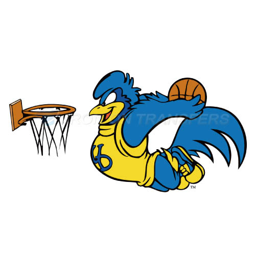 Delaware Blue Hens Iron-on Stickers (Heat Transfers)NO.4239