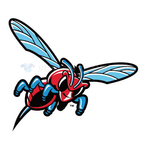 Delaware State Hornets Iron-on Stickers (Heat Transfers)NO.4245