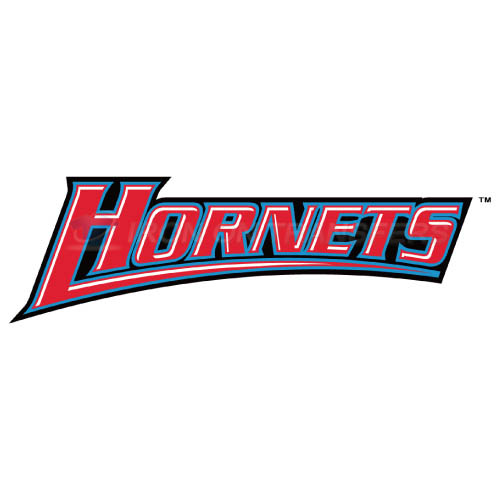 Delaware State Hornets Iron-on Stickers (Heat Transfers)NO.4249