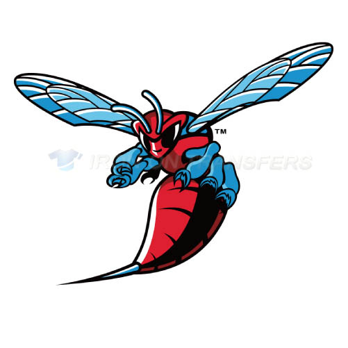 Delaware State Hornets Iron-on Stickers (Heat Transfers)NO.4251