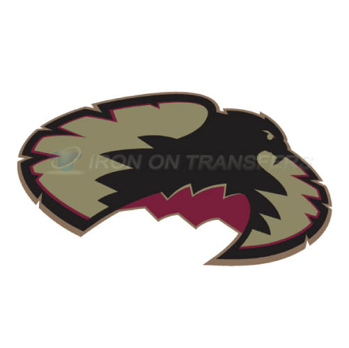 Denver Pioneers Iron-on Stickers (Heat Transfers)NO.4256