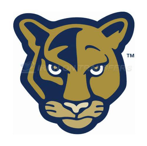 FIU Panthers Iron-on Stickers (Heat Transfers)NO.4364