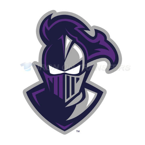 Furman Paladins Iron-on Stickers (Heat Transfers)NO.4433