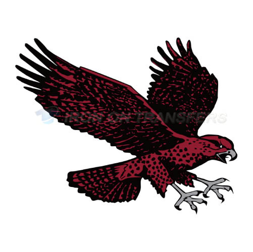 Maryland Eastern Shore Hawks Iron-on Stickers (Heat Transfers)NO.4986
