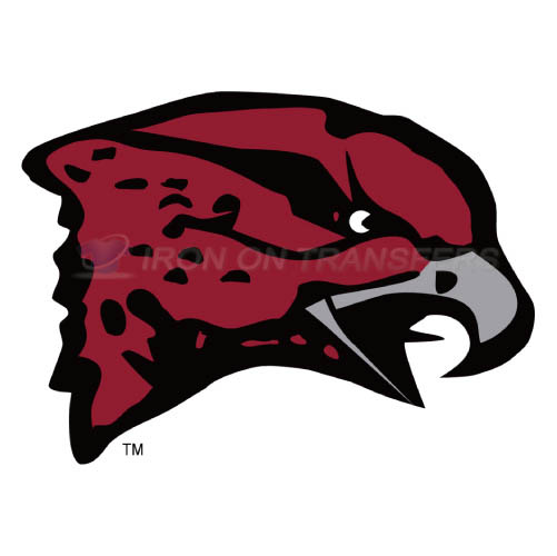 Maryland Eastern Shore Hawks Iron-on Stickers (Heat Transfers)NO.4987