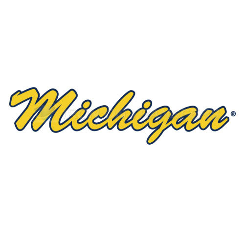 Michigan Wolverines Iron-on Stickers (Heat Transfers)NO.5072