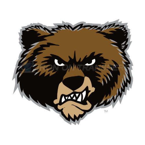 Montana Grizzlies Iron-on Stickers (Heat Transfers)NO.5171