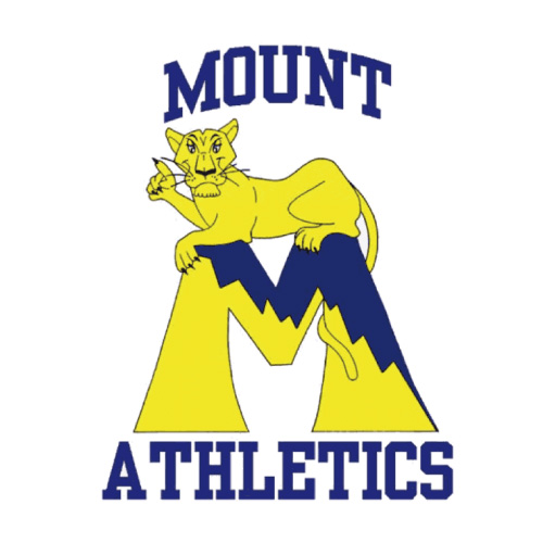 Mount St Marys Mountaineers Iron-on Stickers (Heat Transfers)NO.5211