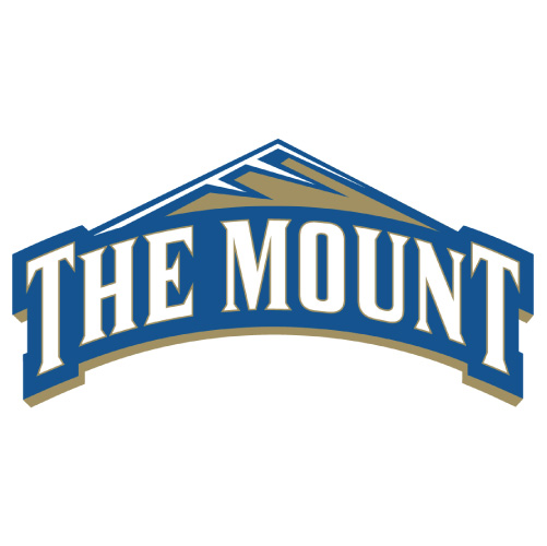Mount St Marys Mountaineers Iron-on Stickers (Heat Transfers)NO.5212