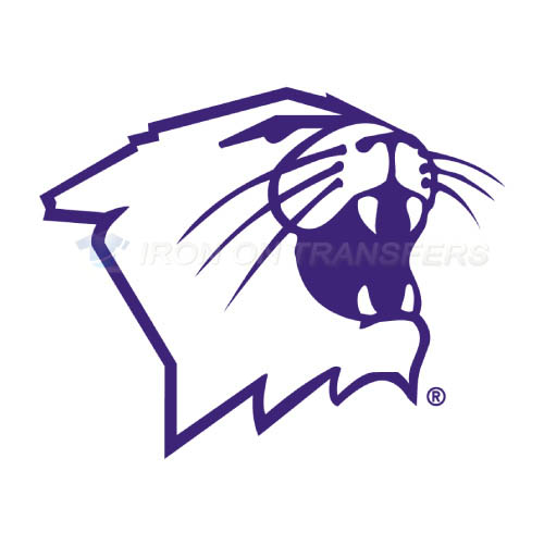 Northwestern Wildcats Iron-on Stickers (Heat Transfers)NO.5705
