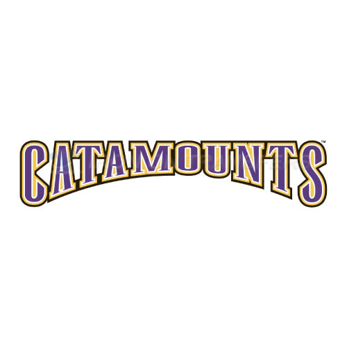 Western Carolina Catamounts Iron-on Stickers (Heat Transfers)NO.6953