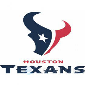 Houston Texans Iron-on Stickers (Heat Transfers)NO.535