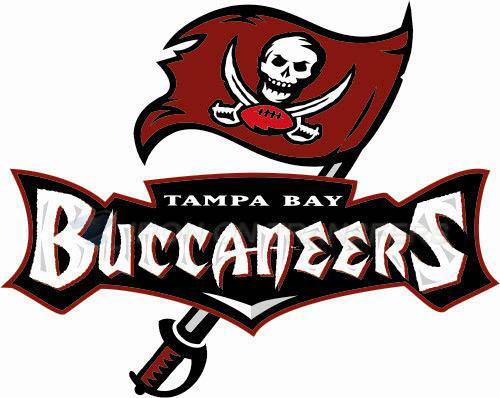 Tampa Bay Buccaneers Iron-on Stickers (Heat Transfers)NO.828