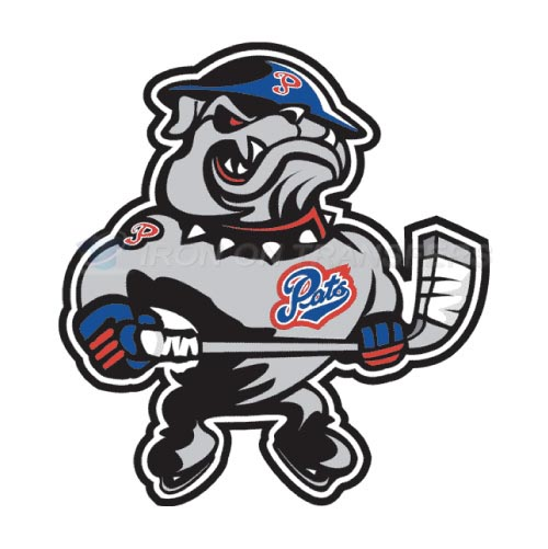 Regina Pats Iron-on Stickers (Heat Transfers)NO.7538