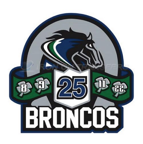 Swift Current Broncos Iron-on Stickers (Heat Transfers)NO.7550