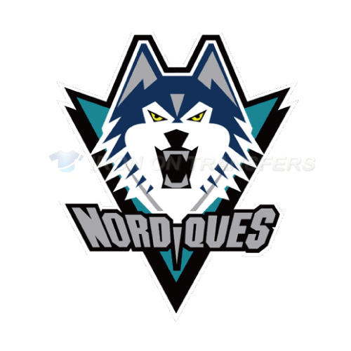 Quebec Nordiques Iron-on Stickers (Heat Transfers)NO.7145
