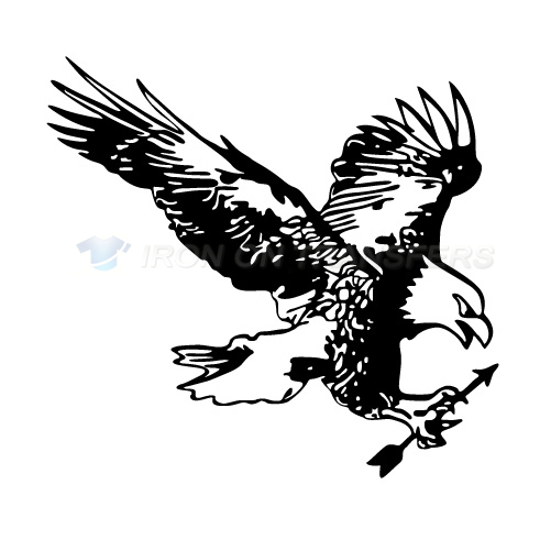 Eagles Iron-on Stickers (Heat Transfers)NO.2214