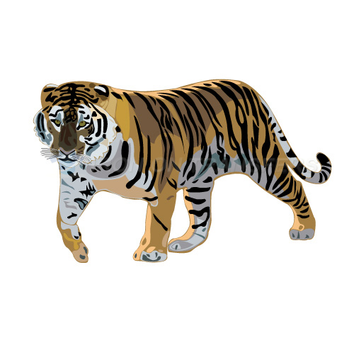 Tiger Iron-on Stickers (Heat Transfers)NO.8892